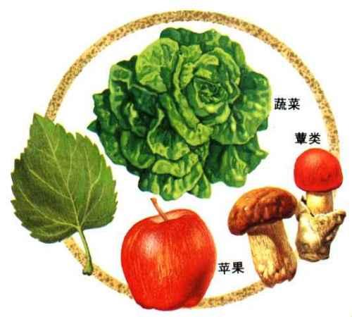 预防胃炎 关键在日常保健