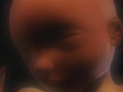 胎儿38周宫内发育震撼高清图片
