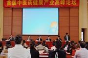 健康产业高峰论坛 热议如何发展健康产业
