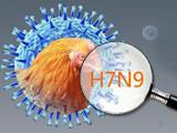 H7N9来袭不可怕